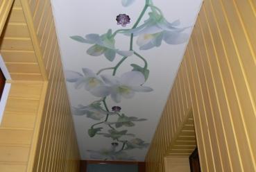 Натяжной потолок в прихожей 20 м2